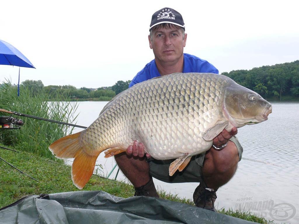 Harsány, 15,30 kg
