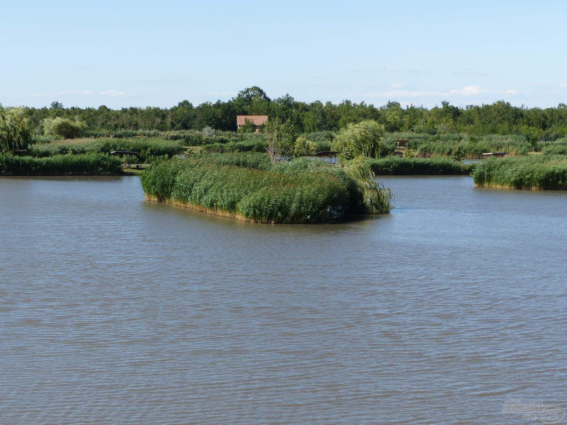 A tóban több nagyobb kiterjedésű sziget található, ezek környékét érdemes meghorgászni