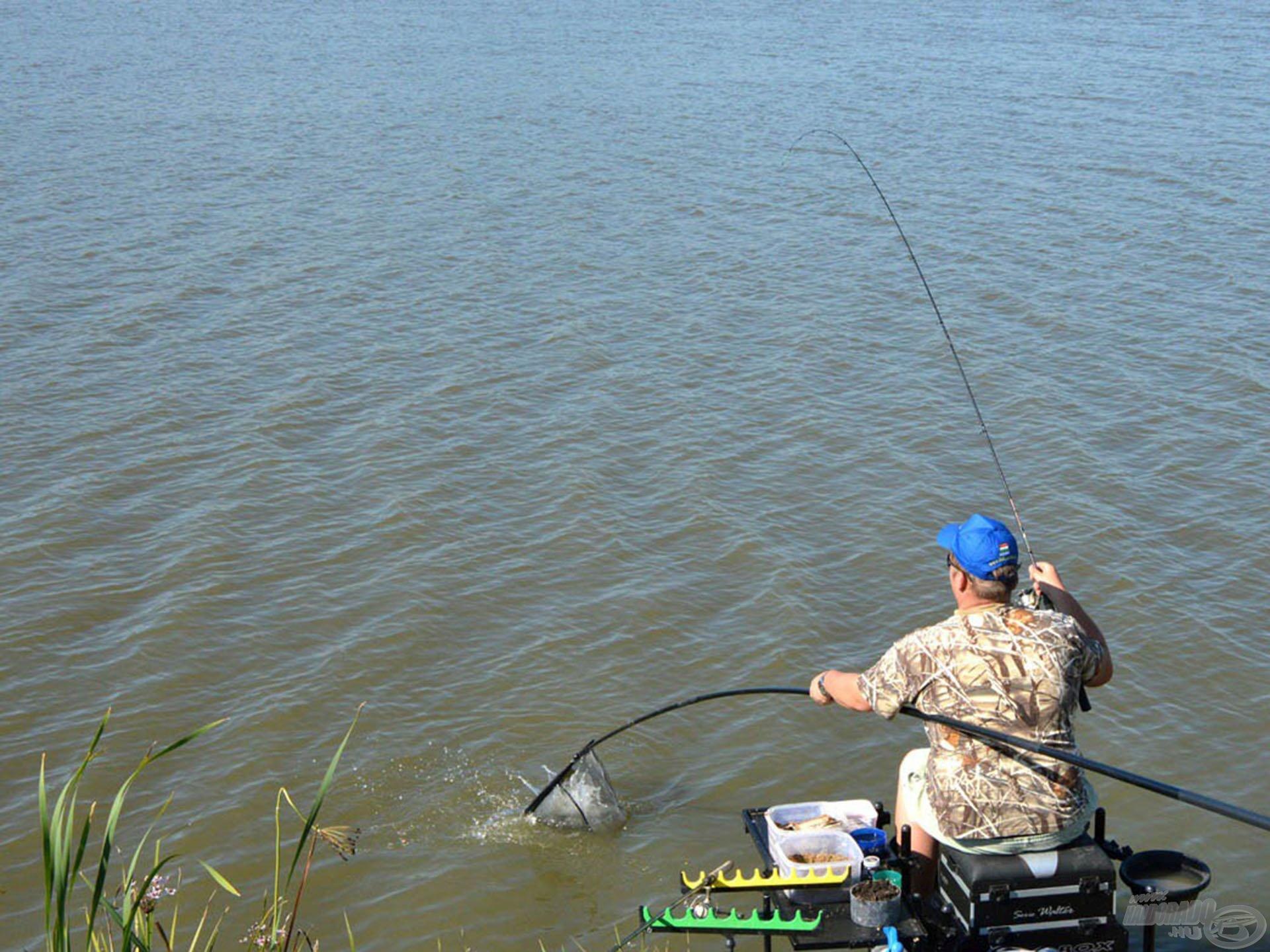 Ha kedveled a method feeder horgászatot, itt a helyed!