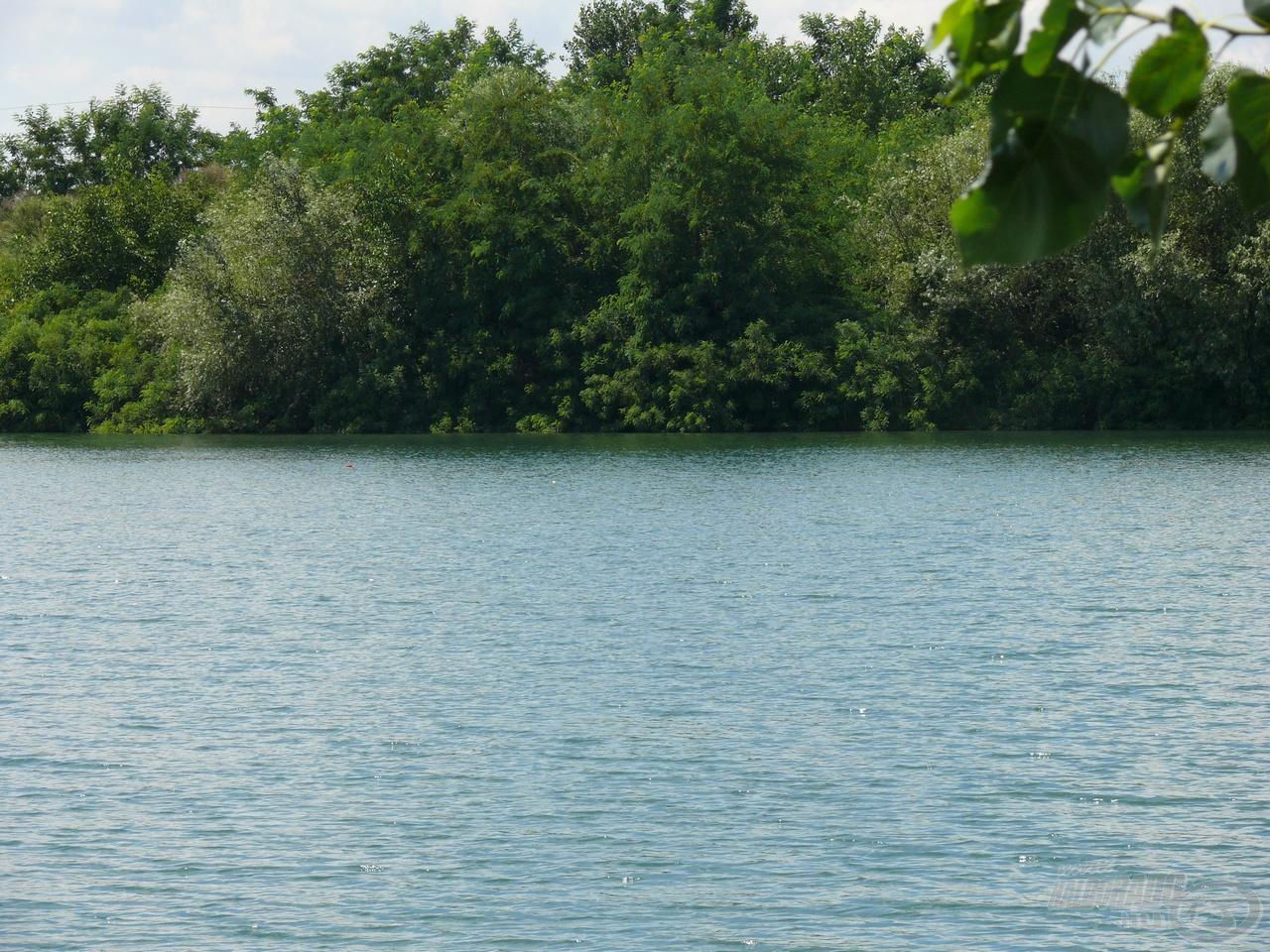 … és a másik távolabbi, ami mögött horgásztam néha a bokor alját is