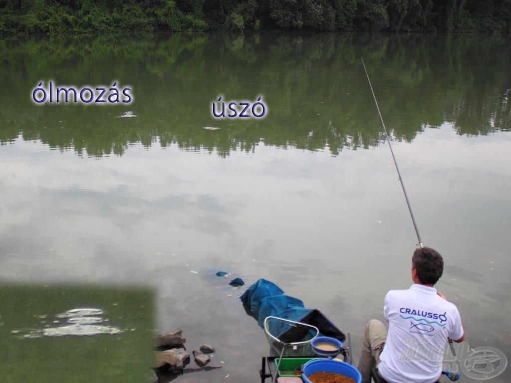 A lényeg, hogy folyási irány szerint alul érjen be az ólom, felette az úszó, így szinte nulla a gubanc esélye. Jól látható a bal alsó kis képen a kiterült szerelék vízbe érése: főólom, jelző, csali - 3 kis karika