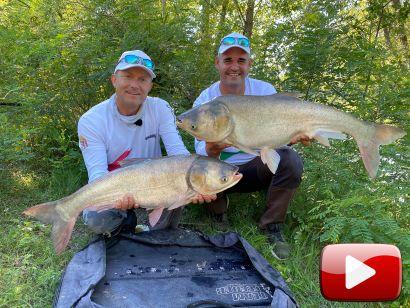 A busa sportszerű horgászata 1. rész - a Visegrádi öbölben