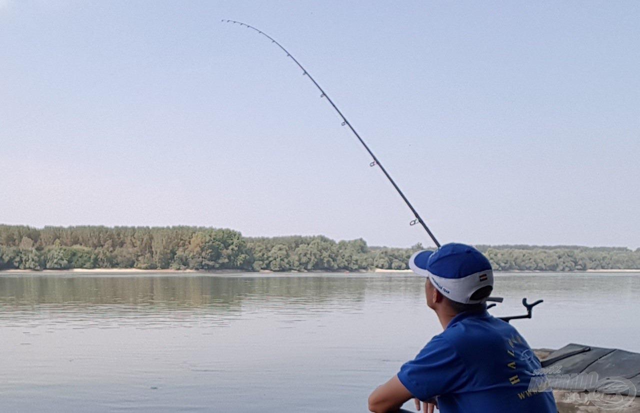 A Kék Fúzió oldódó-lebegő pellet nem kimondottan folyóvízi csali, ám kíváncsian vártam a halak reakcióját