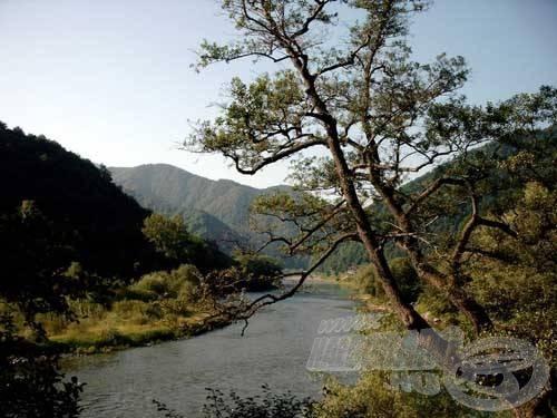 A Radutára vezető út során ismételten lenyűgöztek bennünket a Kárpátok csodálatos szépségű tájai