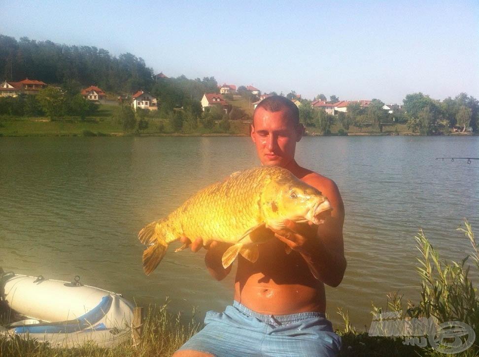 A bivalyerős hal egy 4-5 kg körüli koi ponty volt