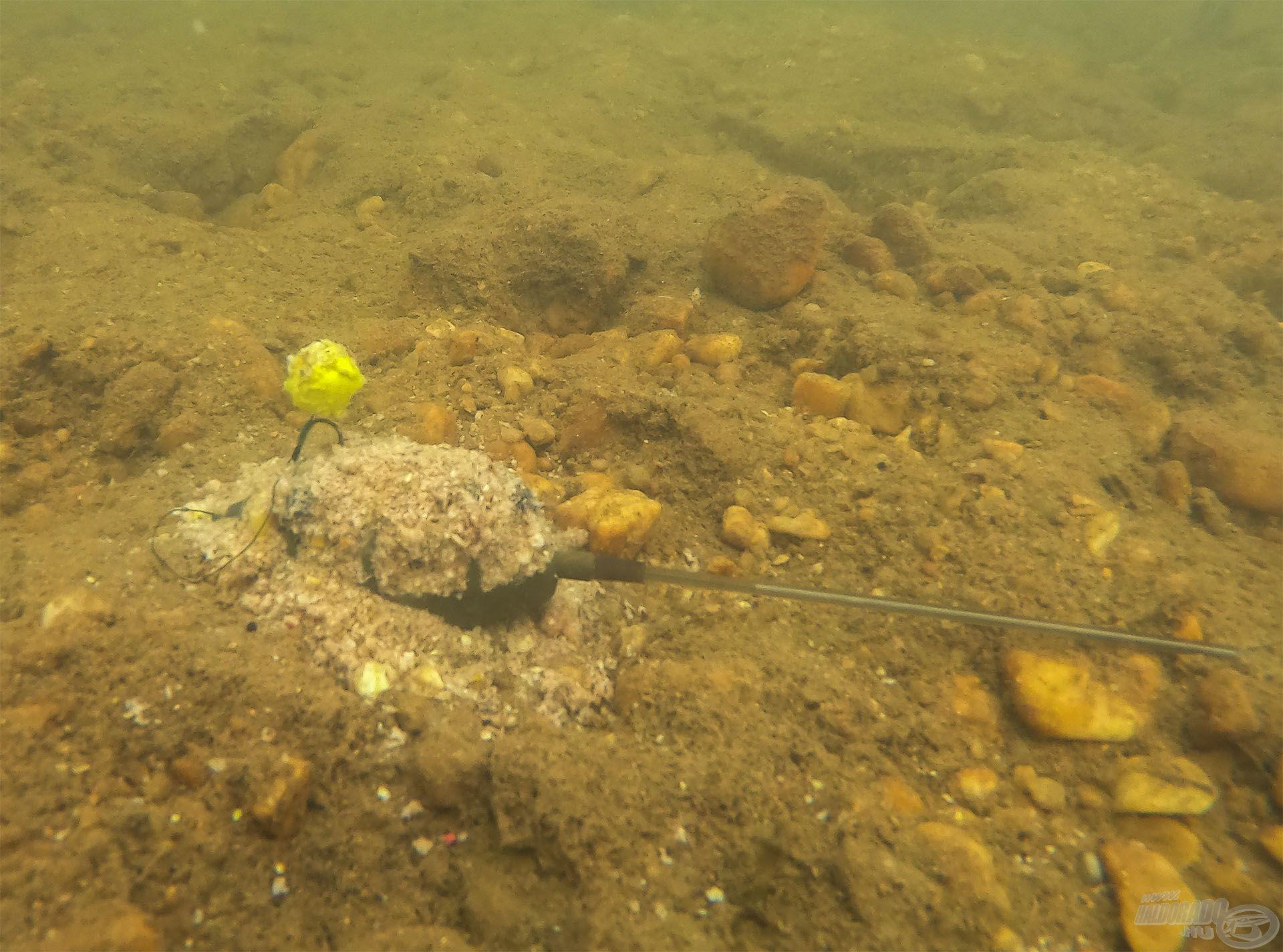 Ezt látják a halak a víz alatt