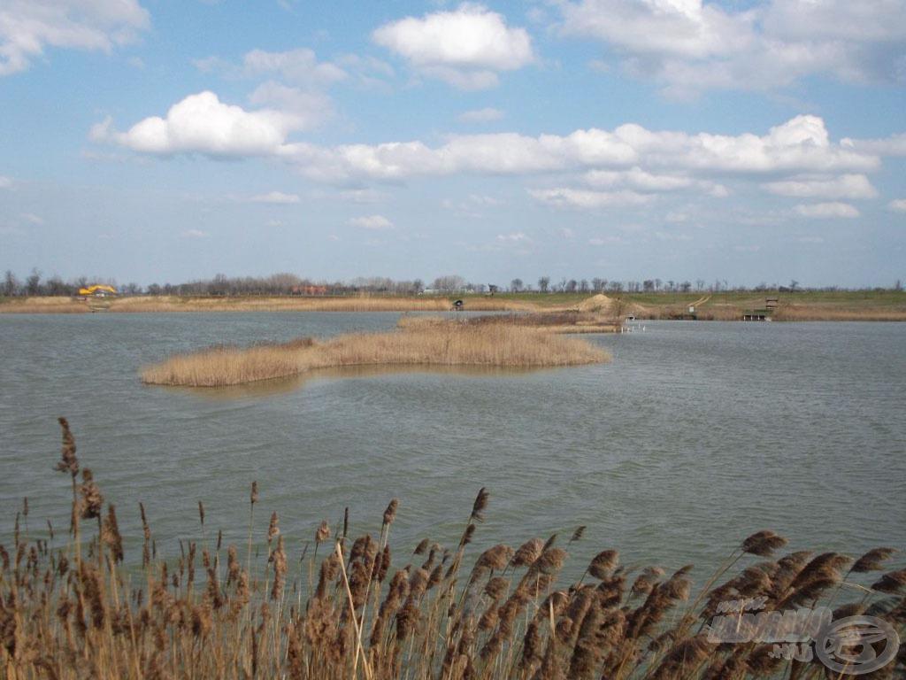 """Egy nagyobb méretű félsziget választja el az úgynevezett """"kis tavat"""" (a képen jobbra) a nagytól. A 16-os horgászhely a sziget mellett található, tulajdonképpen a """"nagy tó"""" széle"""