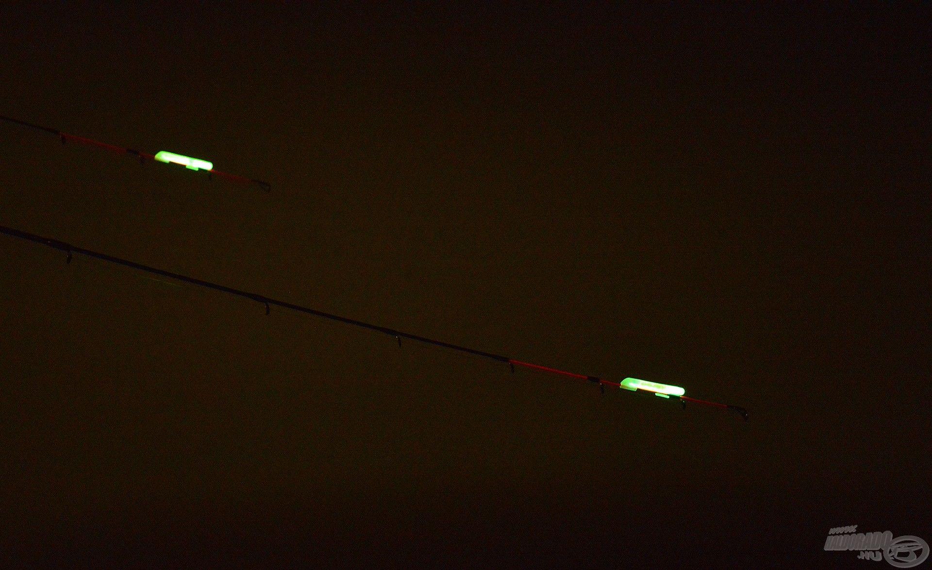 A Night Wasp világítópatronok egyszerű és nagyszerű kiegészítők éjszakai feederezéshez