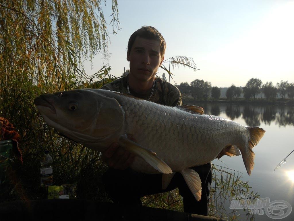 14,50 kg; Full Liver