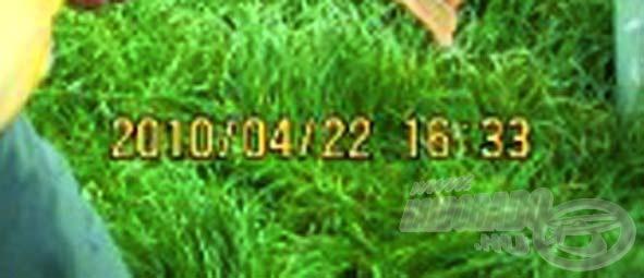 """A """"lelkes horgász"""" azt a hibát is elkövette, hogy a képen rajta hagyta a dátumot is, egyértelmű bizonyítékot szolgáltatva saját maga ellen. Az első képen: 2010/04/22 16:33 olvasható…"""