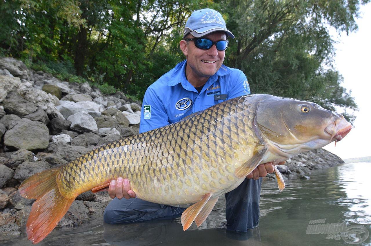 Döme Gábor a hazai horgászat egyik legismertebb képviselője. Legyen szó a világ nagy tavairól, folyóiról vagy egy kis tóról, több évtizedes rutinjának köszönhetően mindenhol feltalálja magát, és akár ilyen szép halakat segít partra