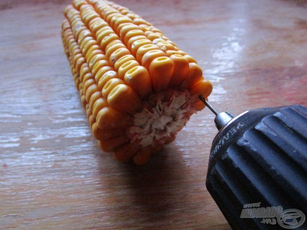 A kukoricacsövön sokkal könnyebb átfúrni a szemeket