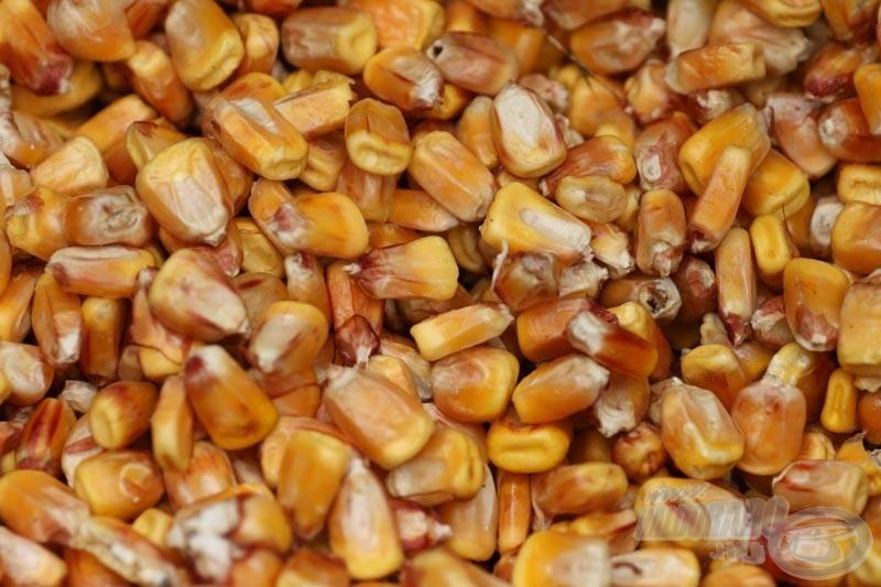 Így néz ki a jól átmosott kukorica!