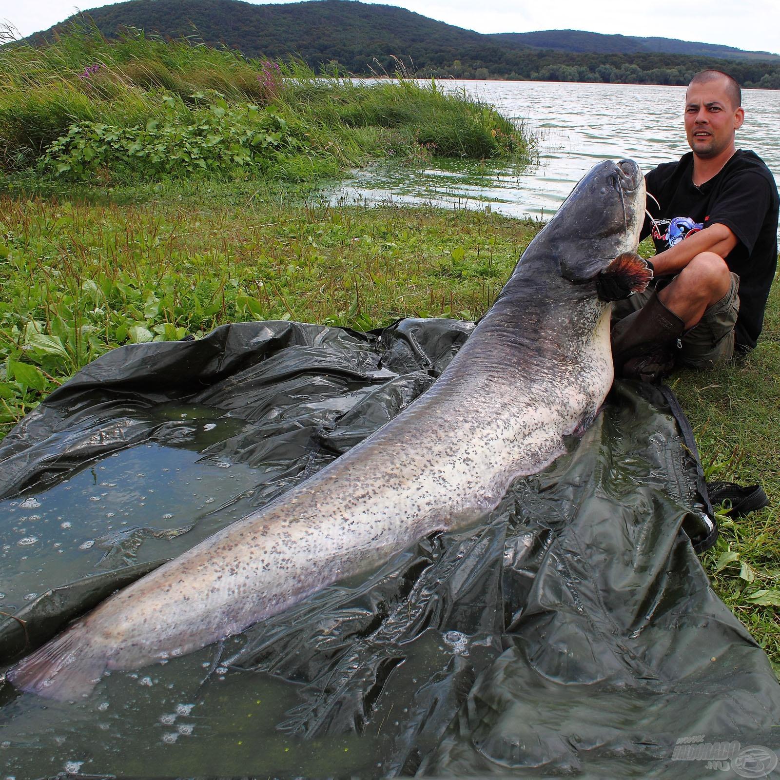 Rekordlistás rablóhalak