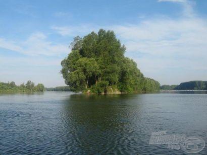 Amurok a Duna árteréről
