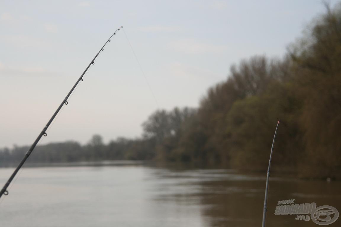 Készségek bevetve, jöhetnek a halak!