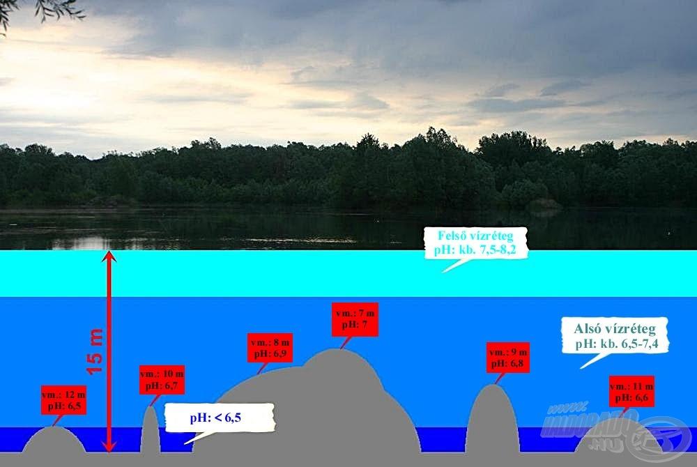Szintén egy sematikus, irányadó ábra a kavicsbánya-tavak mélysége és a pH-értékek alakulása közötti összefüggésekre. A háttérkép forrása: www.belavarihe.hu