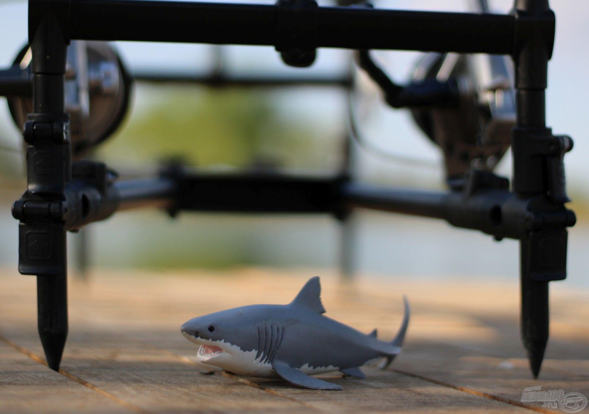 Kabalám, mely minden horgászatomra elkísér