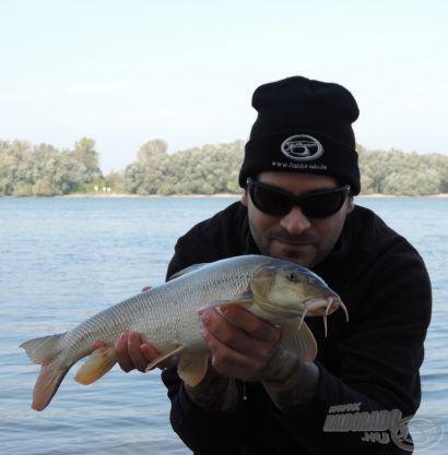 Az őszi Duna ajándékai I. rész - A rohanó folyó