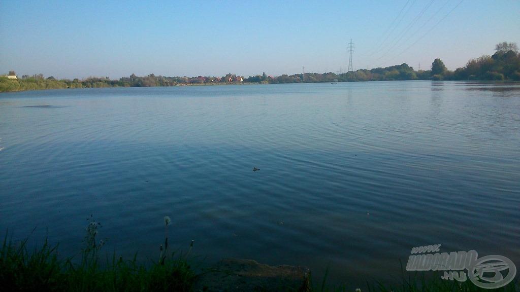 Száraz falevél úszik a vízfelszínen - az ősz jelen van. A távolban, a kép bal oldalán egy pontyfordulás törte meg az idilli képet