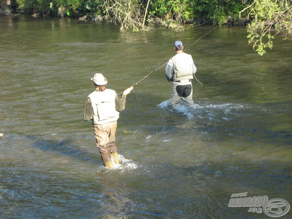 Vízben gázolva keresni a halakat, ez ám a kihívás!