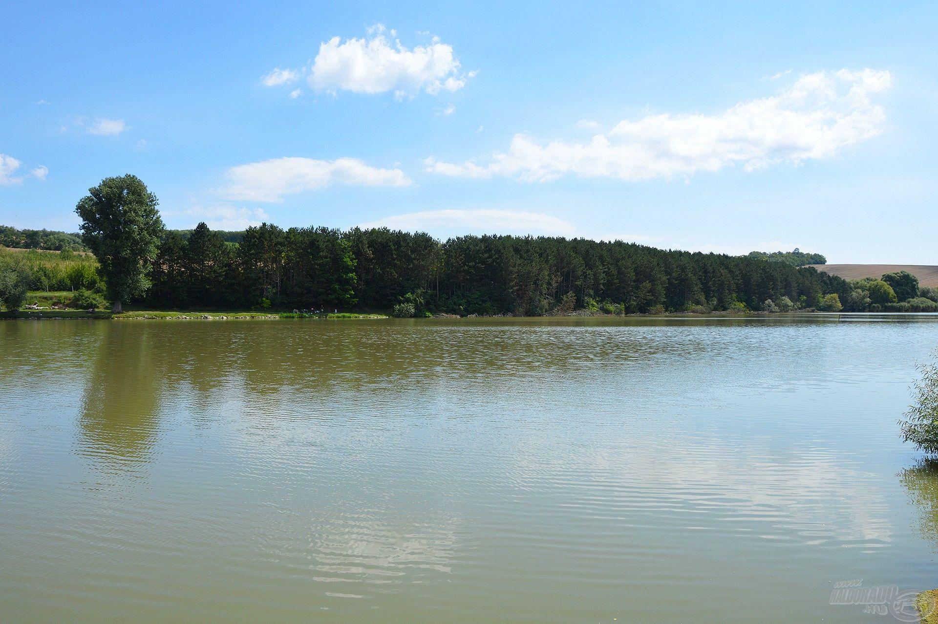 Az egyik kedvenc vizem a Gyermelyi Horgásztó. Ide minden évben visszatérek legalább egyszer!