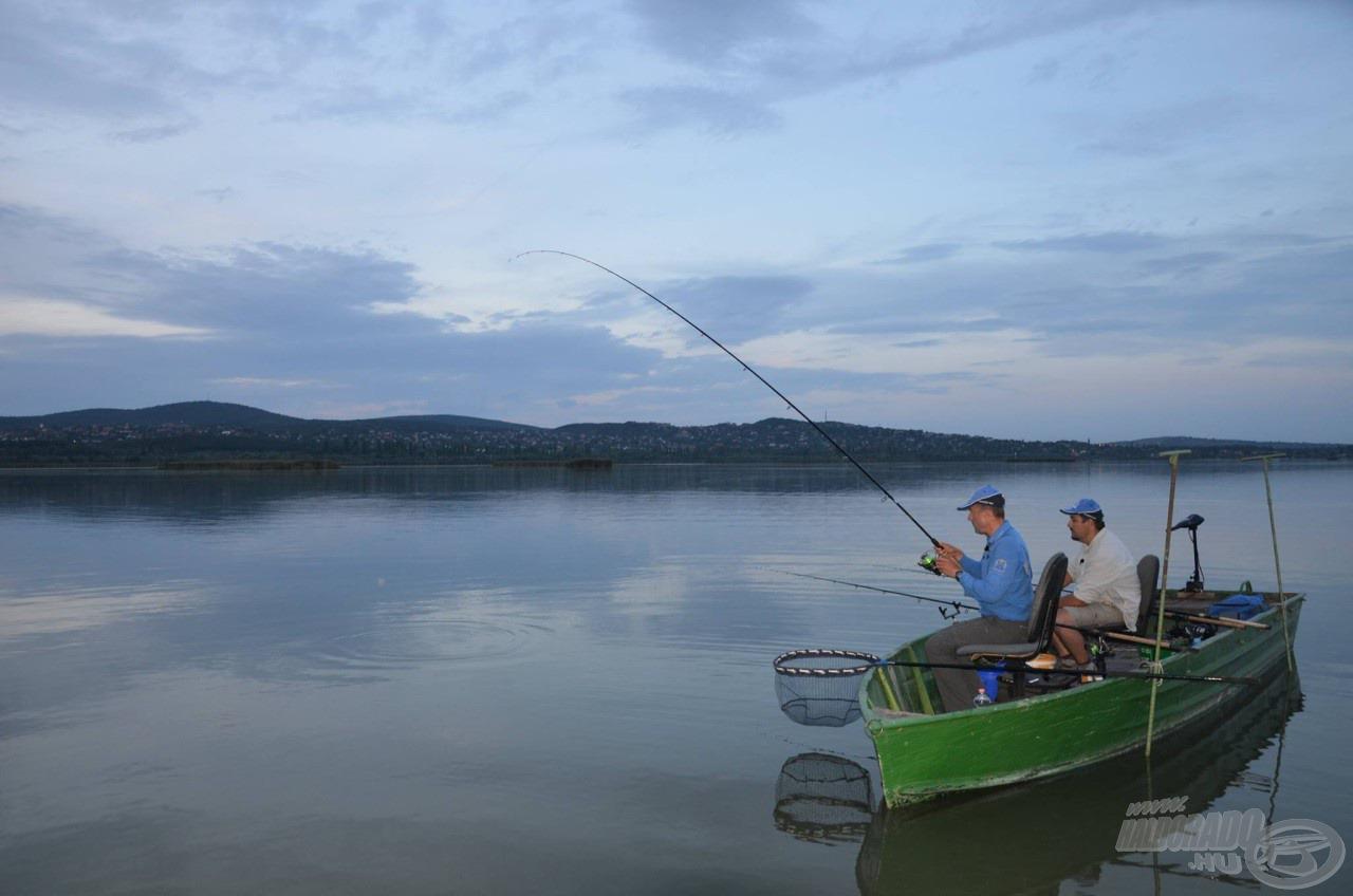 Rövidségük kifejezetten a csónakos és a közeli horgászatok igényeit elégíti ki