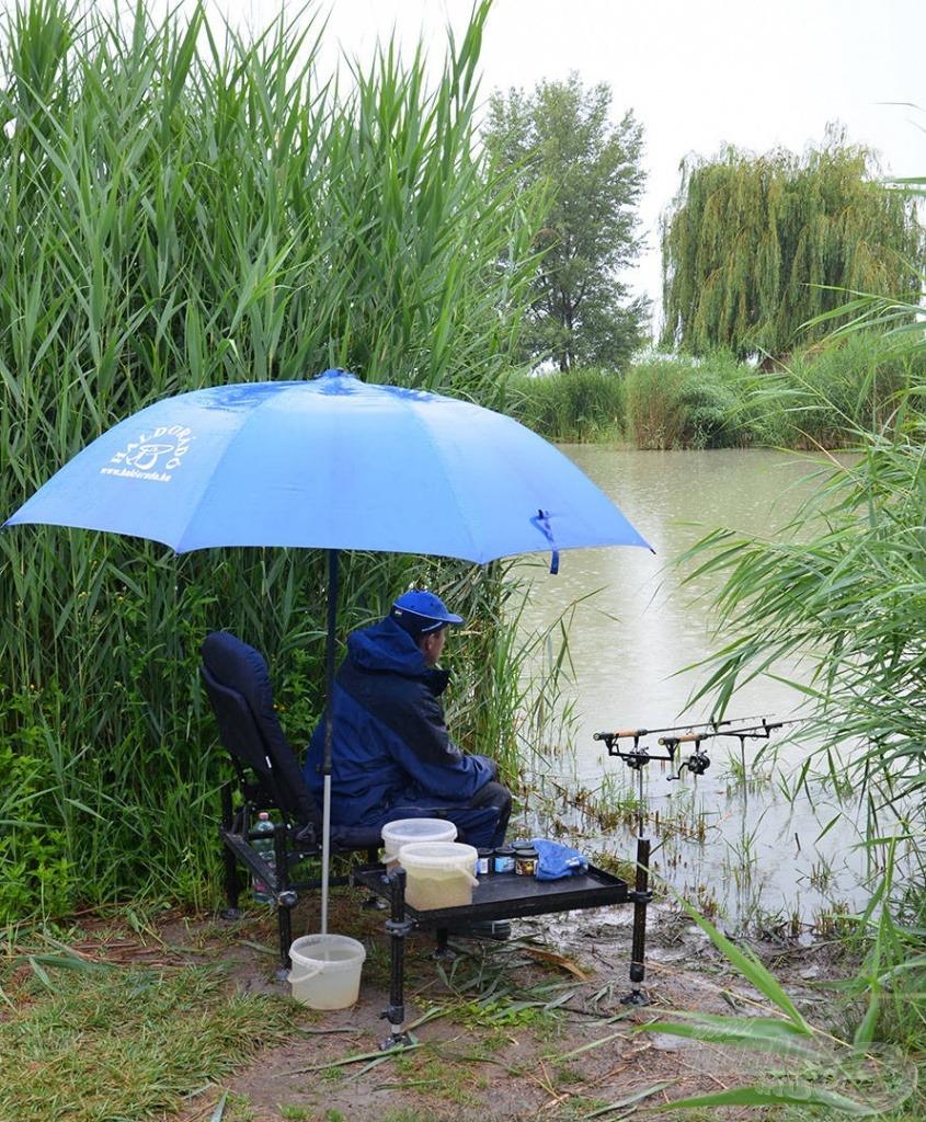 A rövid, de erős feederek jó szolgálatot tesznek a kis tavakon vagy a szűk nádnyiladékokban