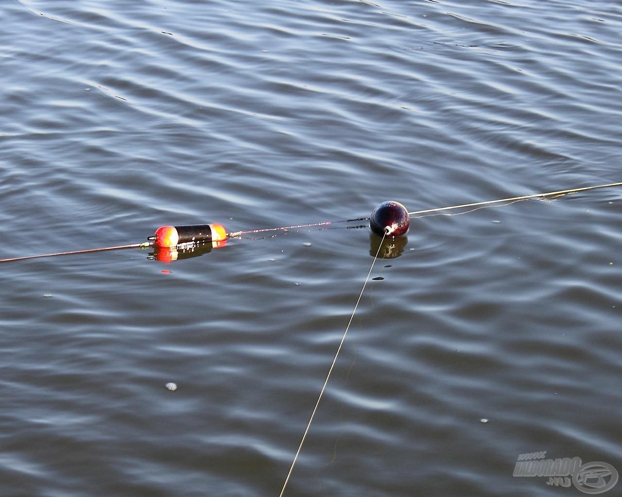 Az előtét bója és az úszó között a rövid monofil zsinór van, ami kapáskor elszakad