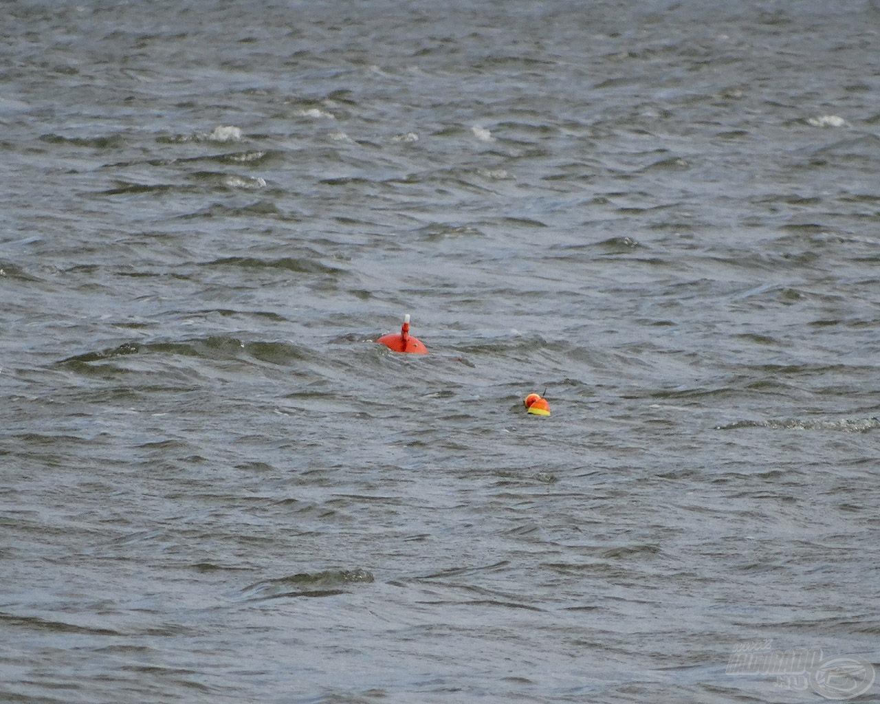Heves hullámzás -> zéró zajongó csörgő-zörgő csónak -> harcsás események. Ez a képlet