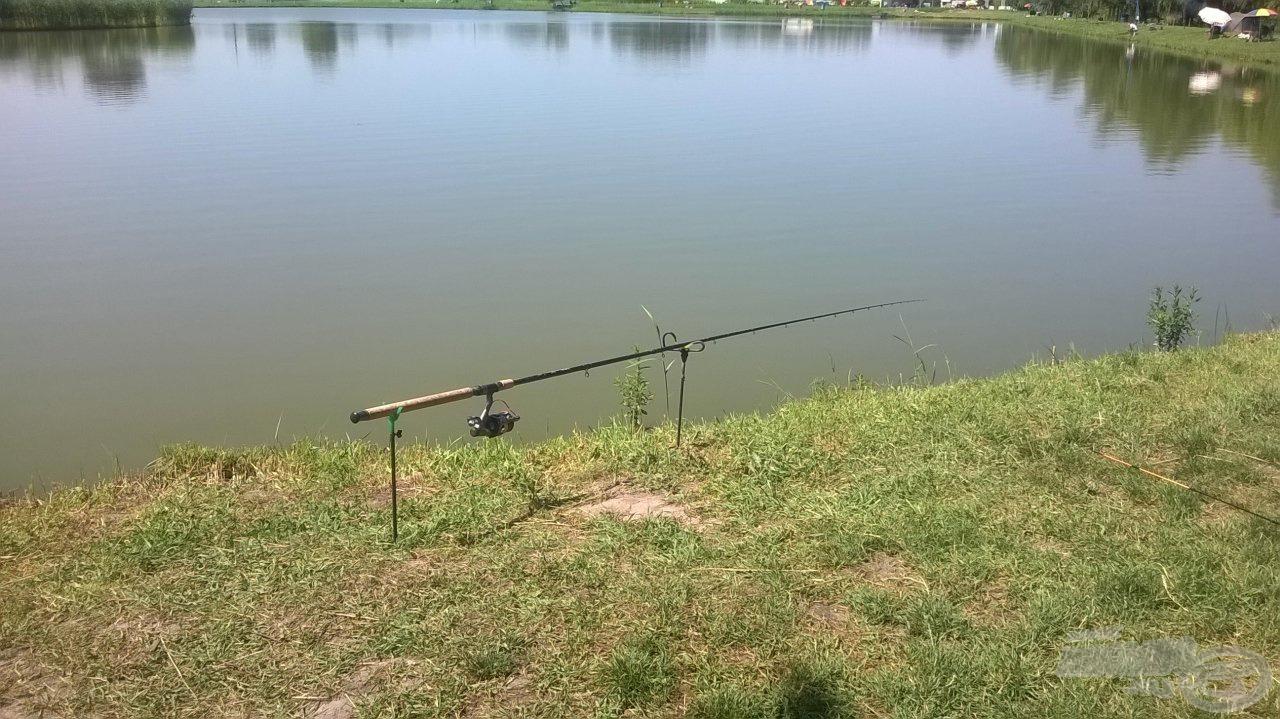 Nagy halakra várva