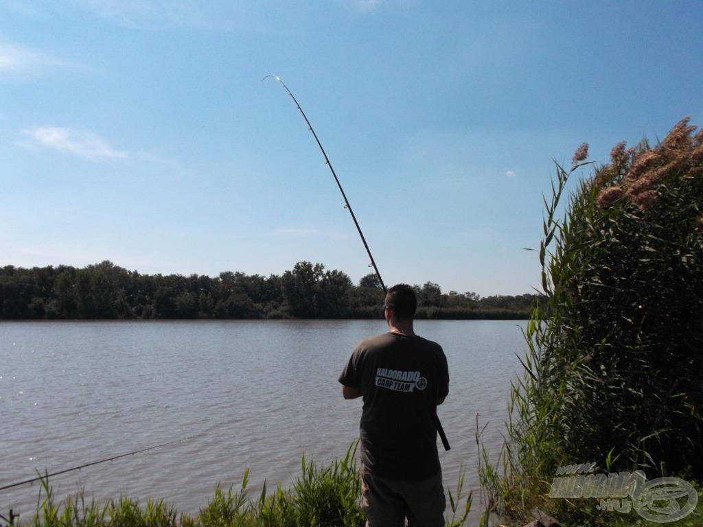 Az erős felszerelés megmutatja a halnak az utat