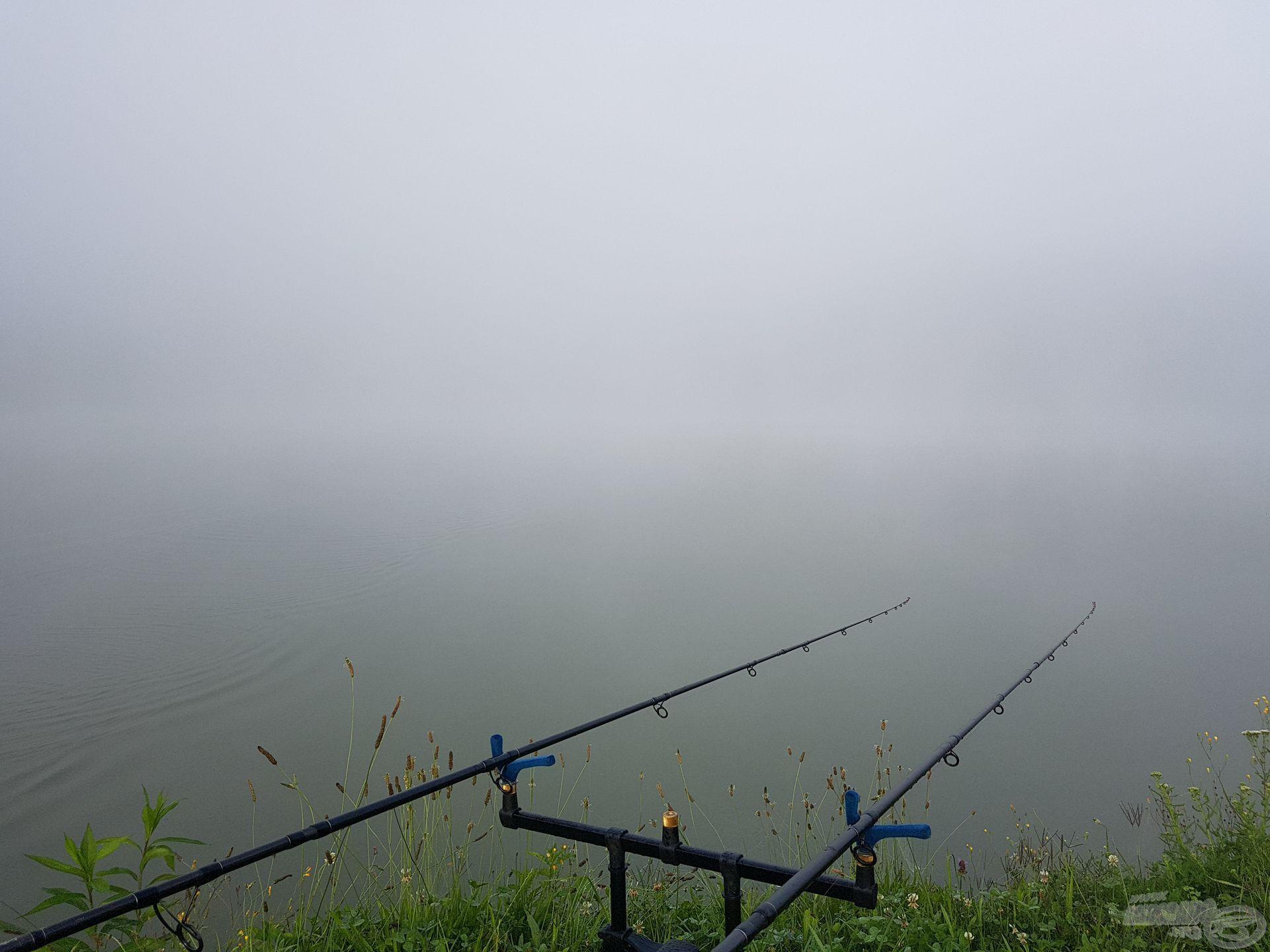 Olyan sűrű köd szállt le, hogy alig láttam el a botom hegyéig