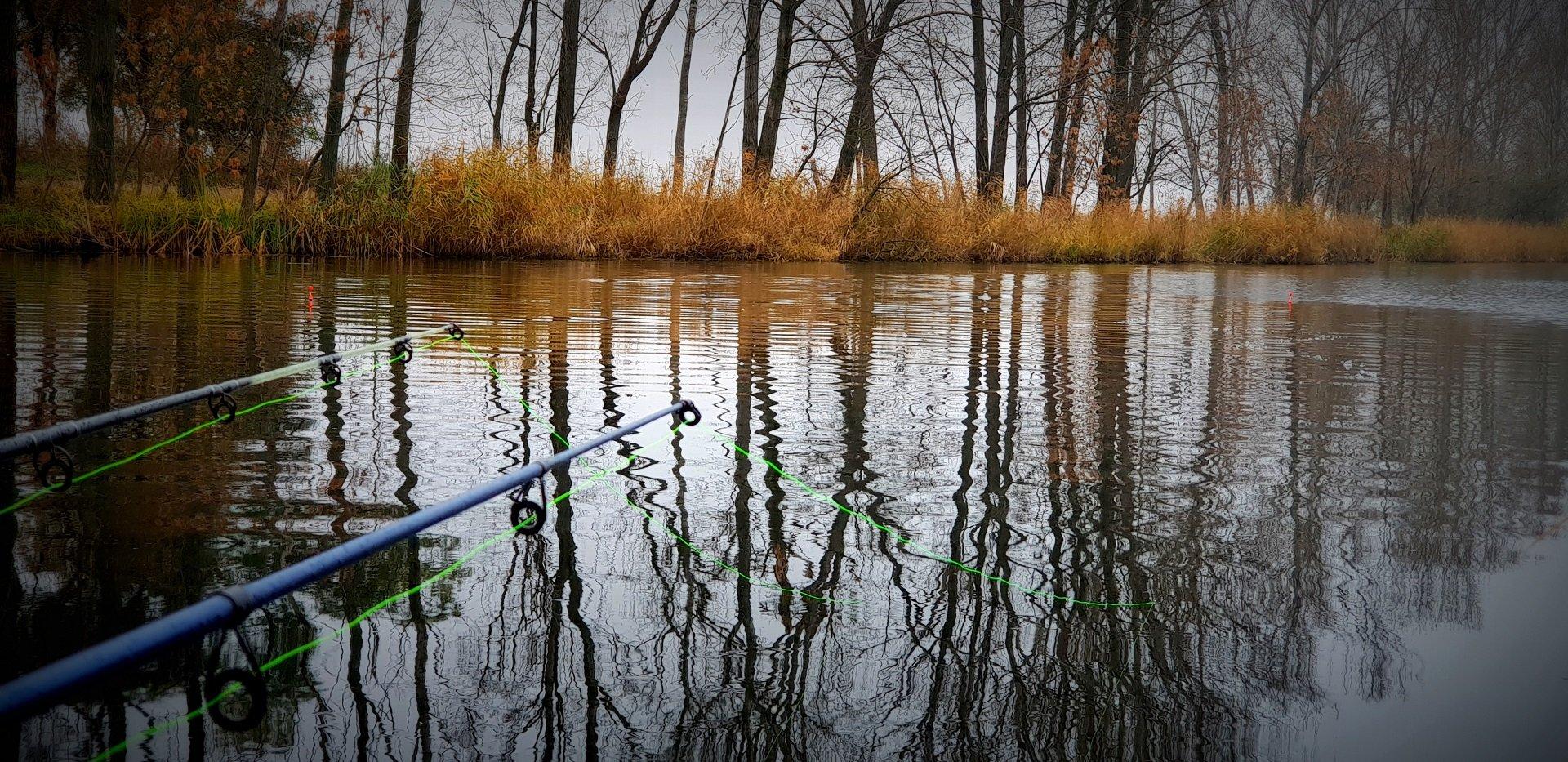 Amint az eső és a szél alábbhagyott, a nyílt vizet vettem célba, és rövidesen felgyorsultak az események…