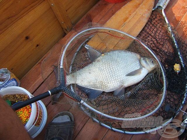 A 2-3 kg-os dévérektől nem lehetett horgászni