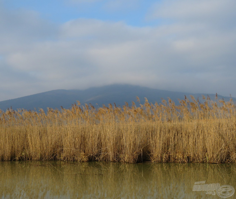 Háttérben a Tokaji hegy