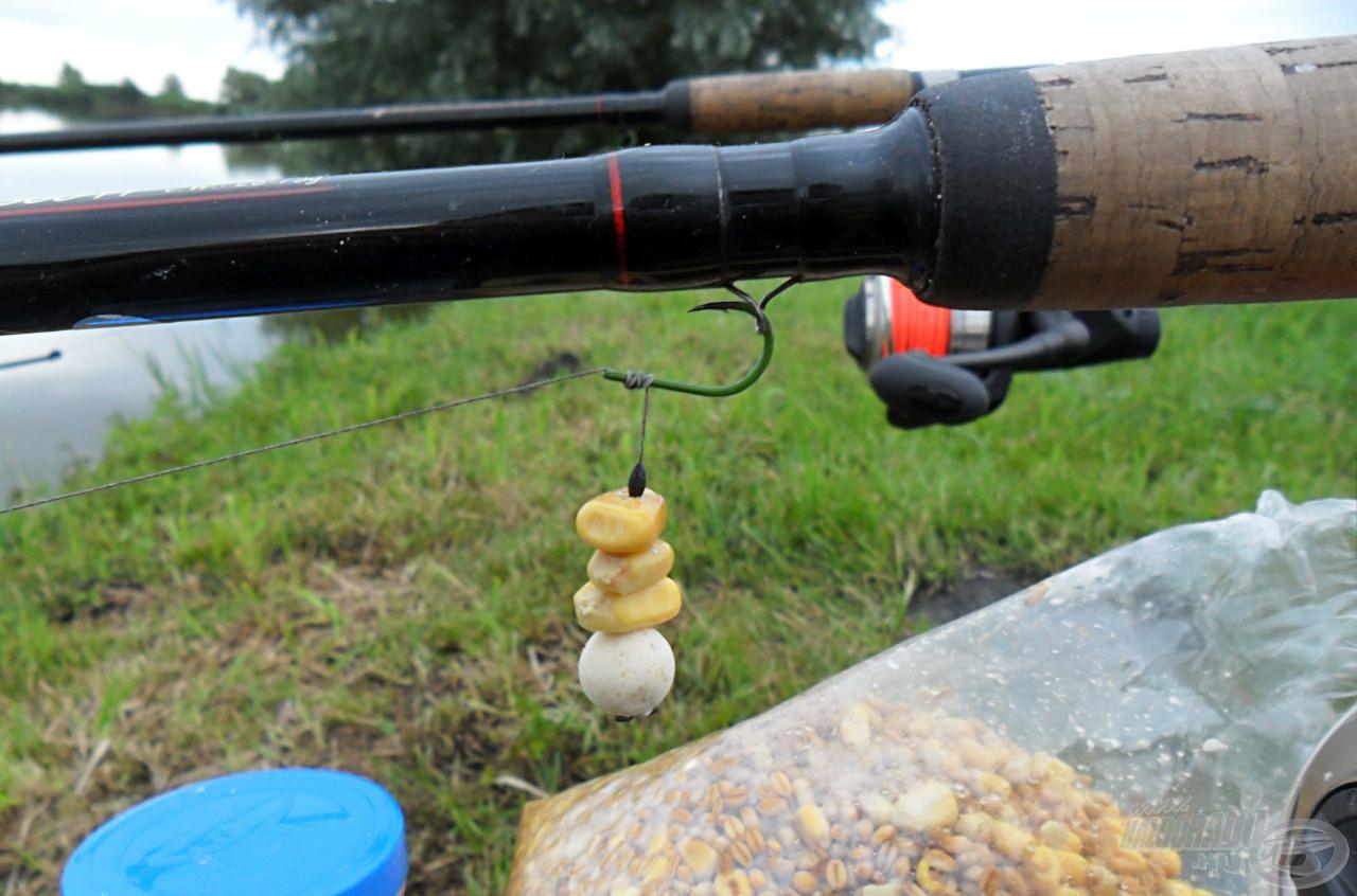 Az egyik csalikombinációt 3 szem FermentX kukorica + egy szem 11 mm-es fokhagymás Quatro Pop Up…