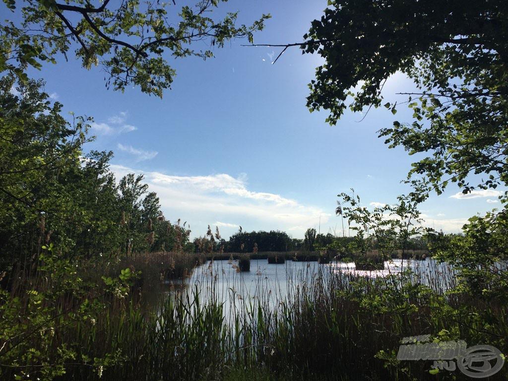 Az első pillantás a tóra máris magával ragadott! Egy szó, mint száz, gyönyörű!