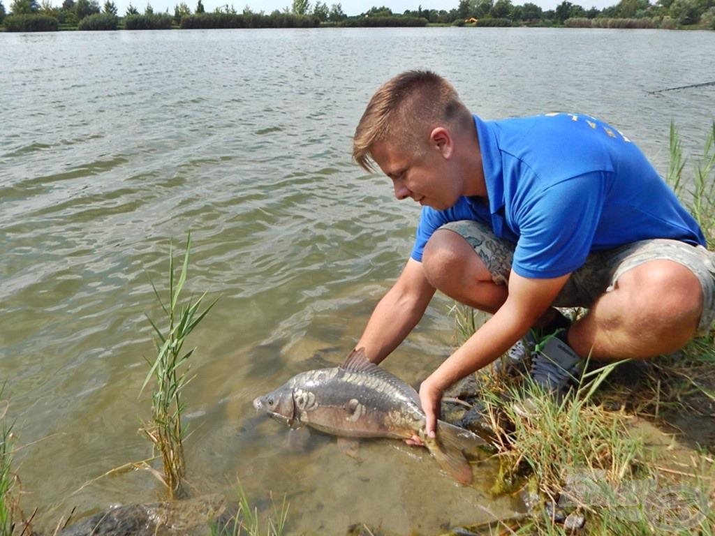 Egy pillanatra se feledkezzünk meg a halak védelméről, óvásáról, a nyári melegben fokozottan figyeljünk rájuk, hogy később akár mi is találkozhassunk velük!