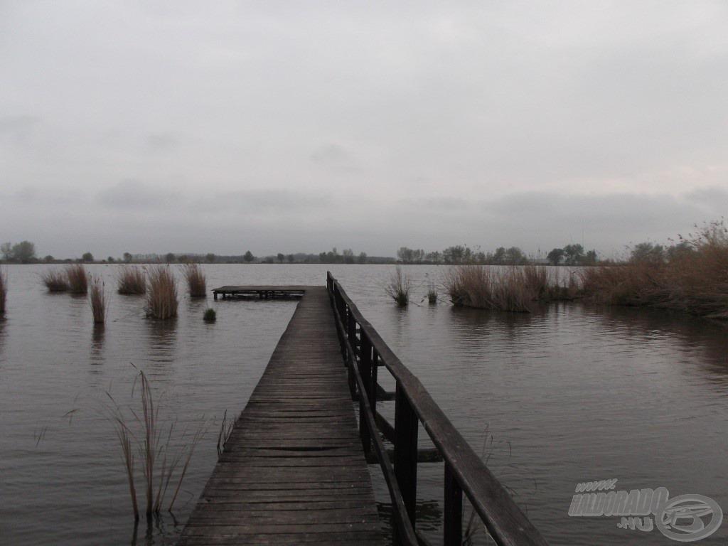 Kedvenc horgászhelyem a tó túloldalán az egyik bojlis állás, szám szerint az 5-ös hely. Innen horgászva olyan, mintha az ember a tó közepén ülne