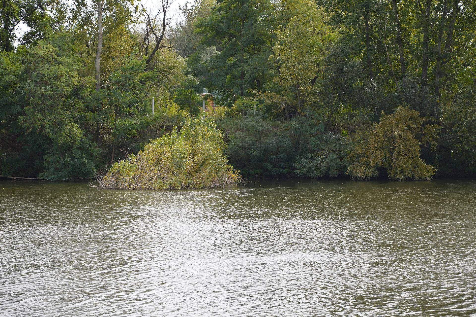 A túlpart mentén rengeteg a víz fölé hajló faág, bokor…