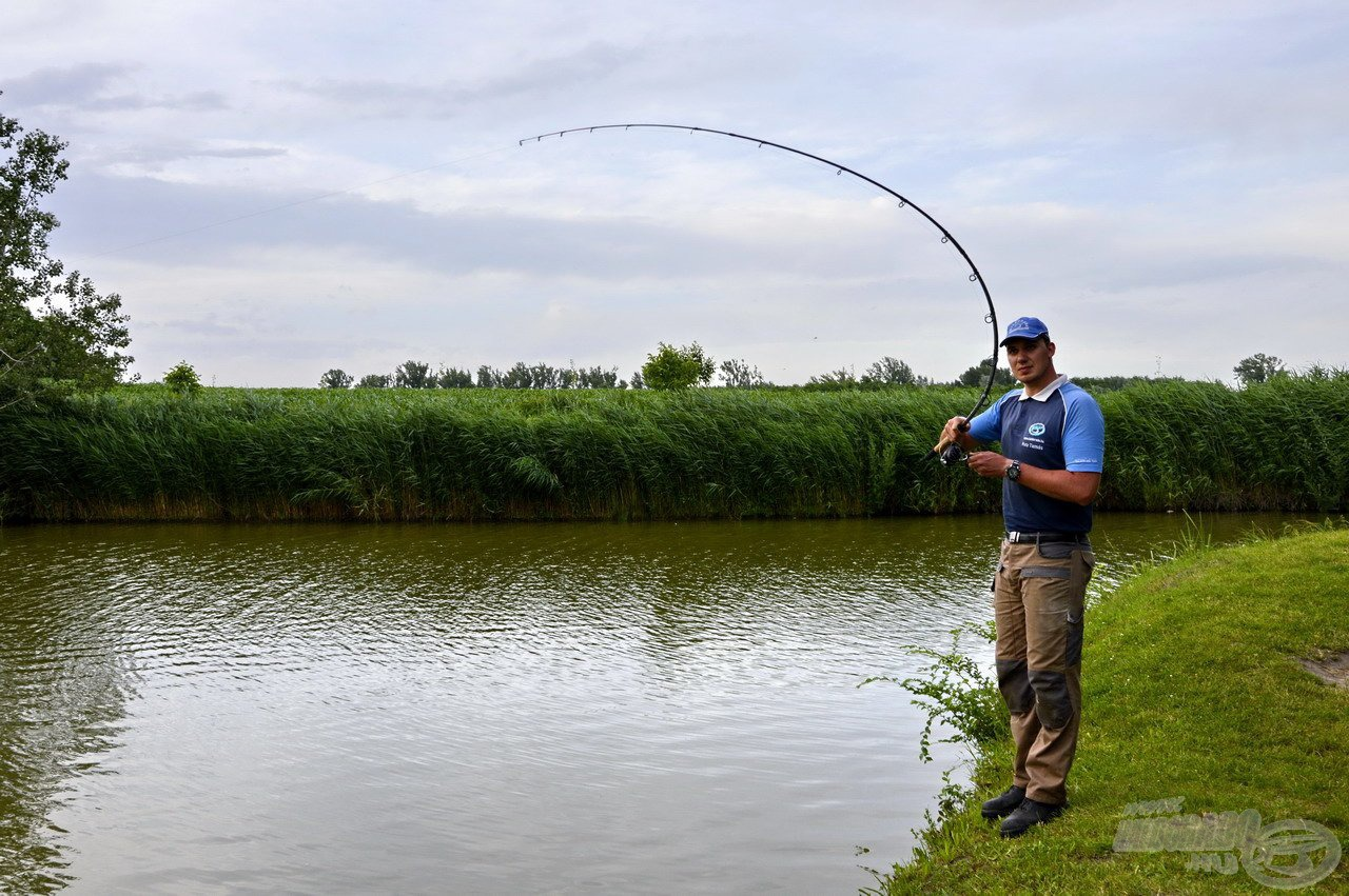 A nagy súly alatt bőszen görbülő bot ismét termetes halat sejtetett…