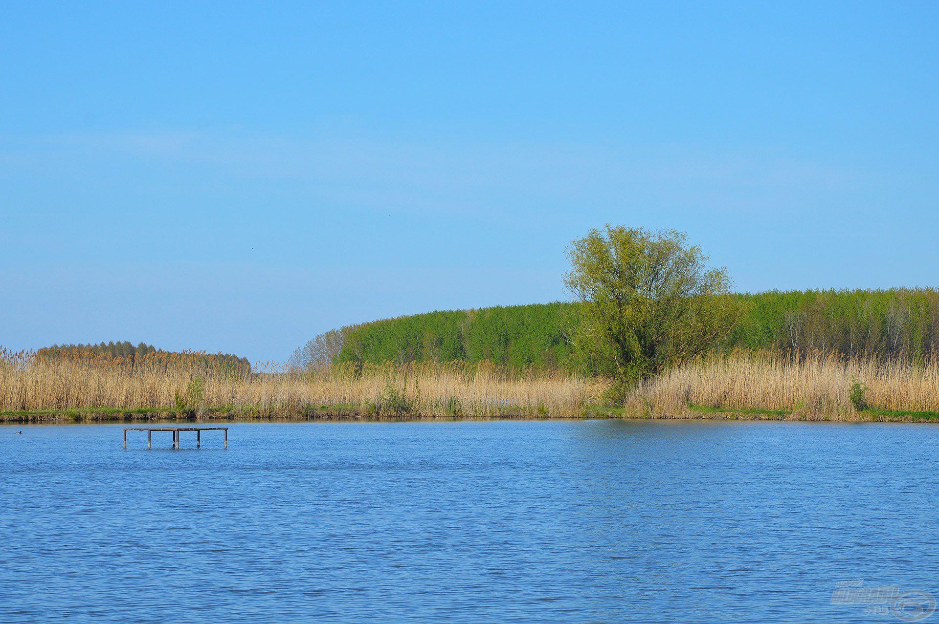 A tó közepén lévő kis stégek mindig jó haltartó helynek számítanak