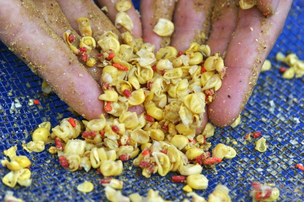 … így kiadták értékes beltartalmukat és aromájukat, mely így elvegyült az etetőanyagban, illetve a kukoricaszemek héjai is érdekes falatokat jelentettek a halak számára