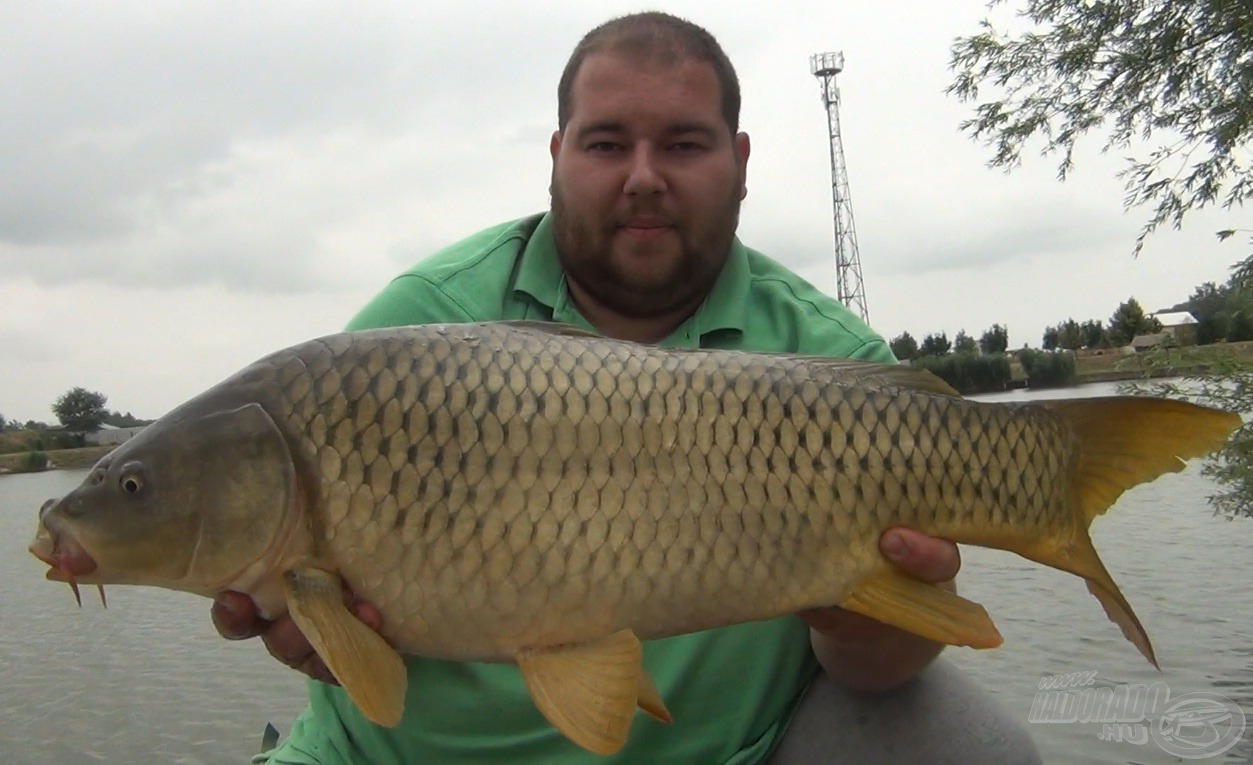 A nap legnagyobb hala