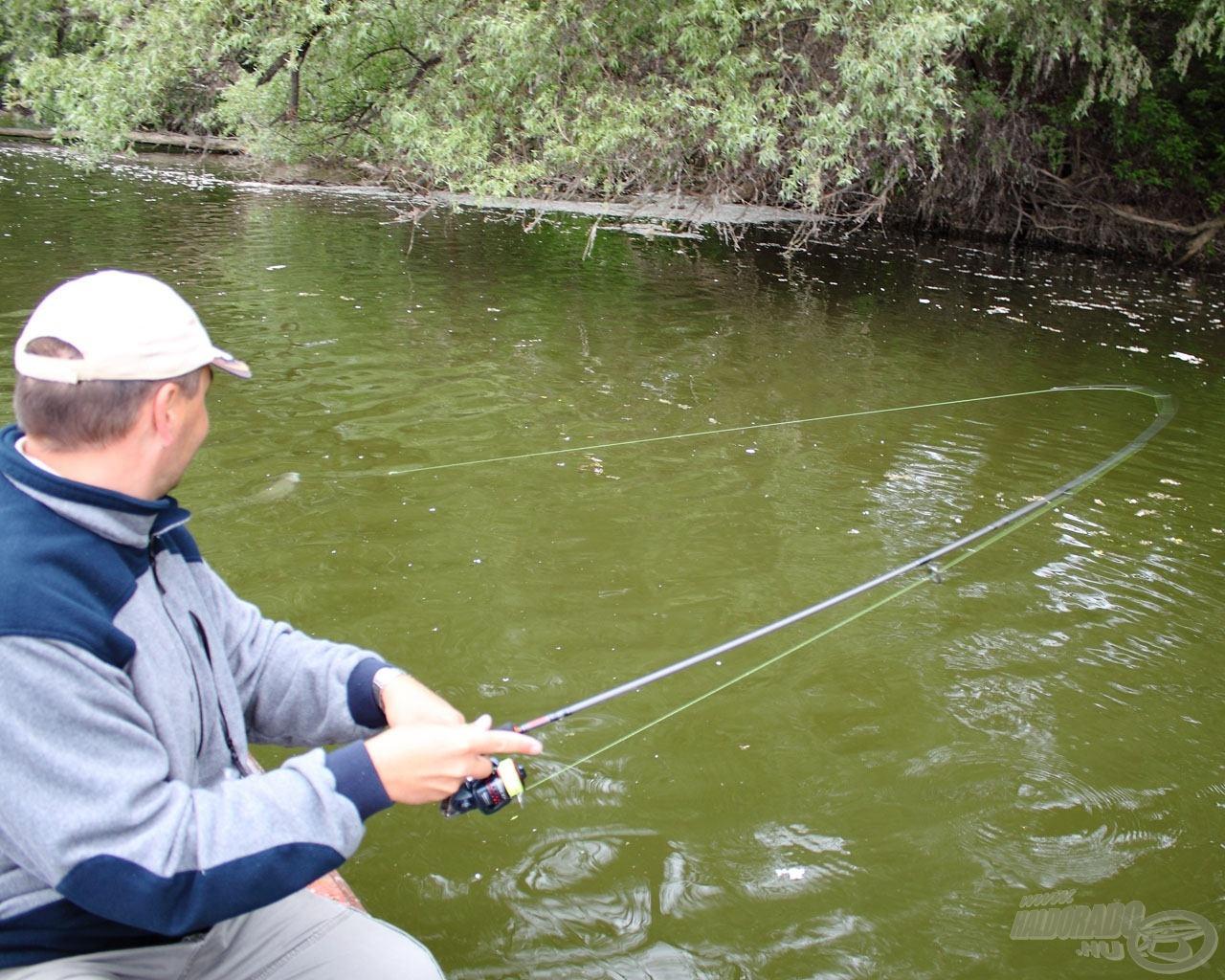12 perc telt el, mire ismét halat akasztottam
