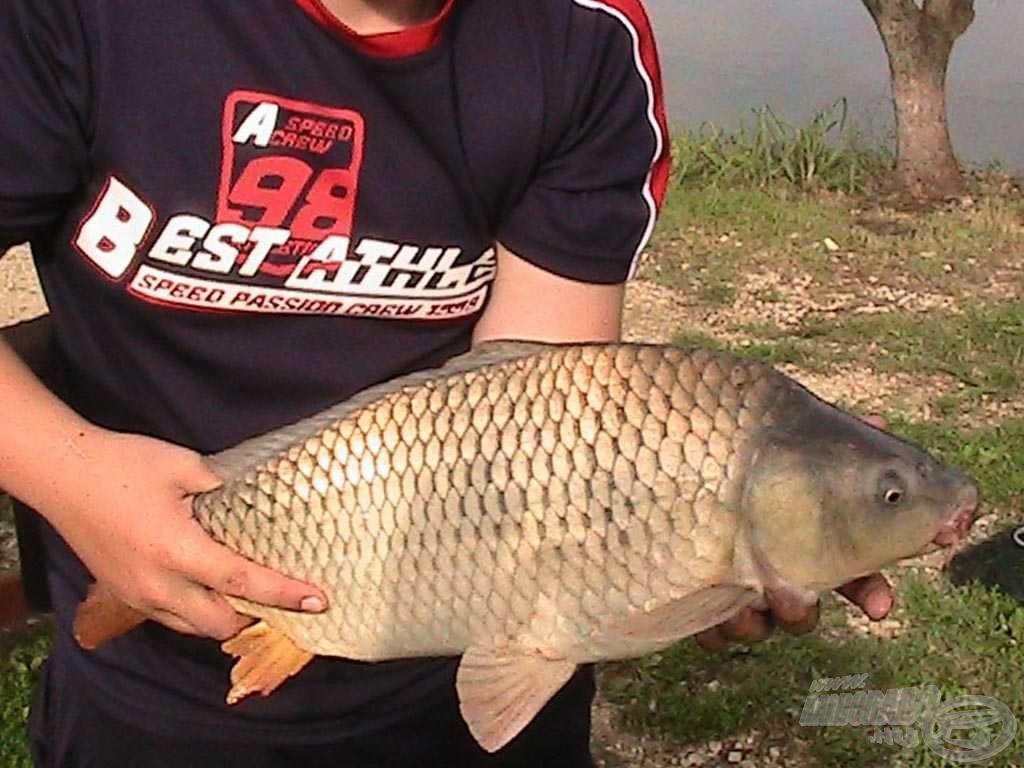 Bár nem a legjobb fotók és nem a legnagyobb halak, én mégis büszkén mutatom meg őket