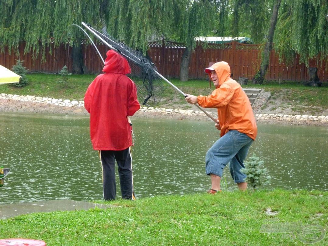 APA! A halat kellene szákolni, nem engem! :)
