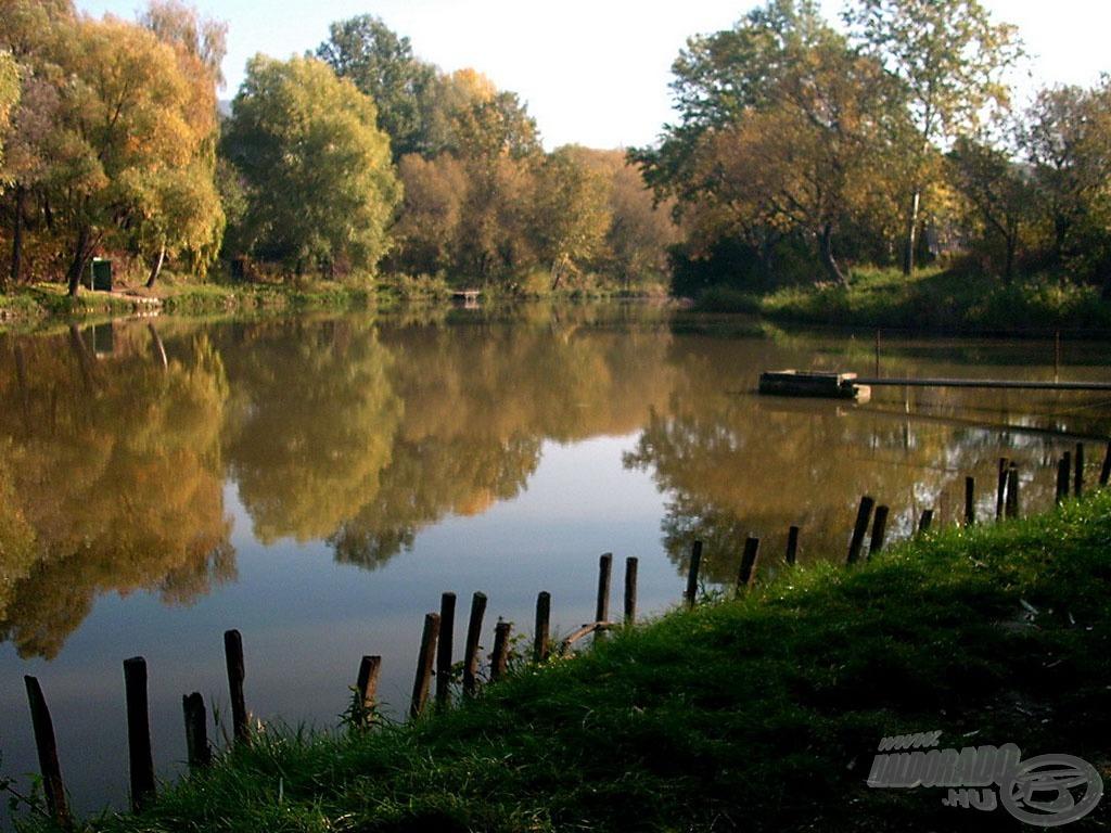 Helyszín: a Látóhegyi II. tó