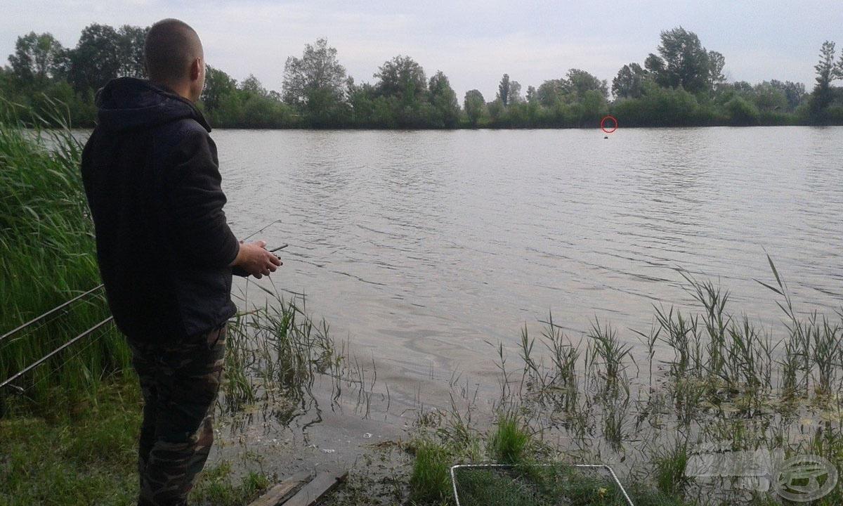 Reggeli a halaknak